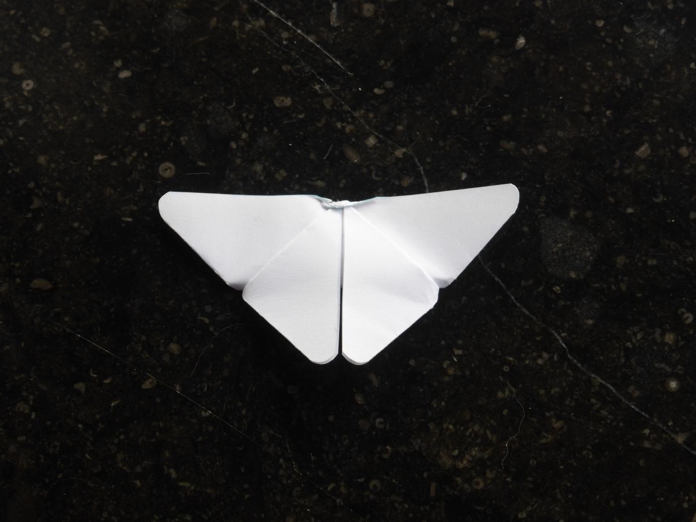 Witte vlinder origami